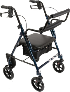 Rental store for Duet Rollator - Transport Chair in Orlando FL